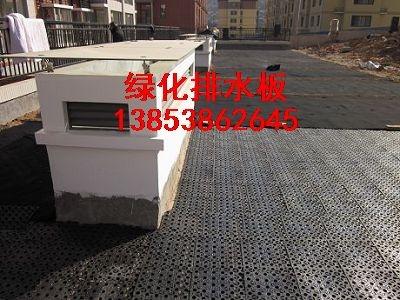 云南排水板-屋顶绿化专用,蓄排水板厂家销
