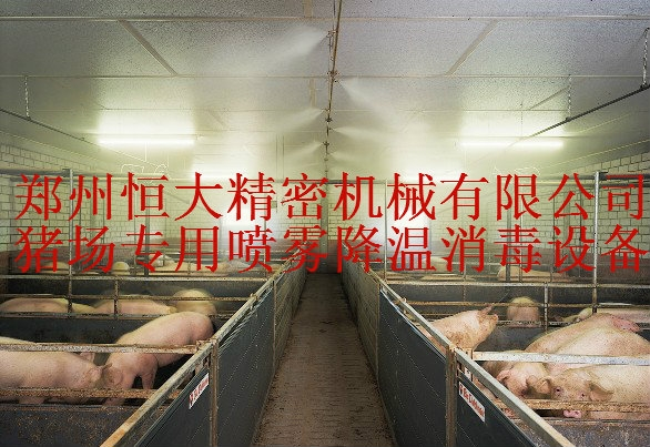 郑州恒大批发#猪场专用喷雾降温设备